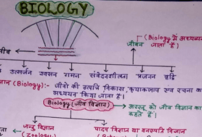 Biology Handwritten Notes in Hindi by Ankur Yadav | Download PDF | Google Drive Link 1